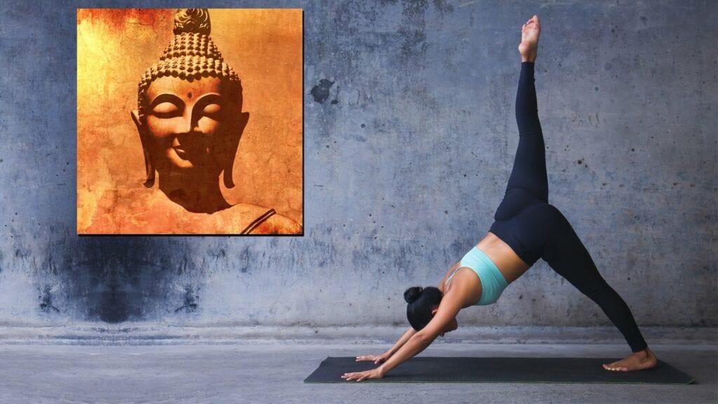 welltherm infrarood paneel yoga hotyoga